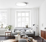 ホームおよびビジネスのための円形の表面の台紙LEDの照明灯