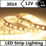 Le SMD 3014 120LED Blanc/M Bande LED Flexible