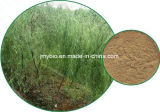 Reiner weiße Weide-Barke-Auszug, Salicin 15%~98% HPLC, Antientzündungs
