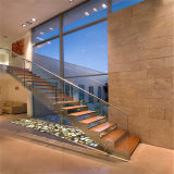 Escalier d'intérieur d'acier inoxydable avec la balustrade en verre Tempered