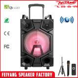 Type du bloc d'alimentation FM à C.A. 220V du best-seller de Feiyang/Temeisheng haut-parleurs par radio en bois avec le port USB F12-09
