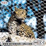 동물원 Enlcosures를 위한 스테인리스 철사 밧줄 그물세공