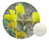 Противомикробная органическая естественная выдержка Cytisine 98% Cytisine, HPLC 99%