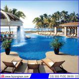 Het Ceramische Mozaïek van het Zwembad (VMC48B03 306X306mm)