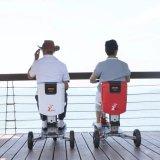 Ce motorino elettrico piegante approvato di mobilità delle tre rotelle