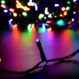 Da luz verde enegrecida da corda do diodo emissor de luz do fio da baixa tensão corda clara do diodo emissor de luz
