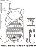 Usine-Bon haut-parleur de chariot aux prix de grand haut-parleur avec Bluetooth pour l'usager/karaoke/Portable