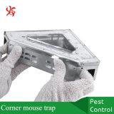 금속 강철 삼각형 마우스 캐치 자비롭 살아있는 코너 마우스 함정