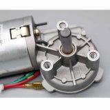 Gleichstrom-Endlosschrauben-Gang-Motor mit 24V 33rpm 6nm (MB062FF100-WD0069-01)