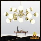 Европе стиль типа подвесной светильник для зал (GD18142P-L18)