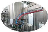 水Tewatmentシステムが付いている飲む水ラインびん満ちる装置ペットびんの飲料水の生産ライン