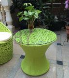 創造的な屋外の庭の居間の寝室の藤の菊の花の椅子