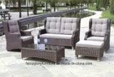 Mobilia esterna del PE del rattan del rattan del giardino di vimini per qualsiasi tempo del patio (TG-JW80)
