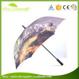 작은 MOQ 27inch 8 위원회 자동적인 열려있는 섬유유리 골프 우산