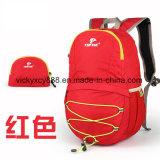 Loisirs de plein air d'épaule double sac à dos Sac de voyage pliable de mode (CY1903)