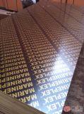建物/型枠のためのフィルムによって直面される閉める合板
