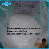 Primoteston Test Enanthate Enxertição de testosterona