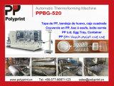Cassetto di plastica materiale dei pp che forma macchina con grande fuori (PPBG-520)