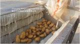Коммерчески автоматическая картошка, запиток имбиря и машина шелушения