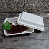 Bagasse-Nahrungsmittelbehälter mit unterschiedlichem Kappe Compopstable Salat-Behälter