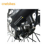 New Product 36V 10.4ah Lithium Battery Electric Bike for Europe