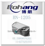 Radiatore dell'olio automatico di BMW E60 E63 E65 E66 E81 E85 E90 dei pezzi di ricambio di Bonai (5989070201/11427525333)