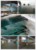 10mm-19mm temperato/vetro temperato per gli schermi di acquazzone