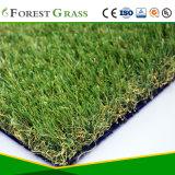 Естественная смотря искусственная трава для ландшафта (LS)