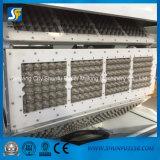 Linha de produção dobro de alta velocidade automática cheia máquina da bandeja do ovo do rolo da bandeja do ovo