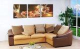 キャンバスの絵画富および贅沢な金花キャンバス現代塗るMc185の3部分の芸術映像のホーム装飾