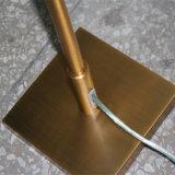 Antike Art-Bronzen-Einstellungs-stehende Fußboden-Lampe für Wohnzimmer