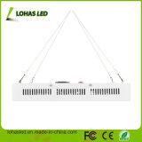 Lo spettro completo dell'indicatore luminoso 600W della pianta di alto potere LED coltiva l'indicatore luminoso