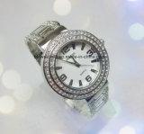 La pulsera cristalina de la aleación de la manera del reloj de 2017 señoras mira el cuarzo