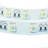 Una striscia 14.4W/M di 5050 RGBW4in1 LED