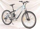 """26 """" 리튬 건전지 전기 산악 자전거 (LWEB-L2610)"""