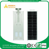 indicatore luminoso di via solare Integrated della batteria LED di 30W LiFePO4 tutto in un crepuscolo all'alba