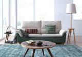 Neuer Entwurfs-lebende Möbel mit preiswertem Preis S6072