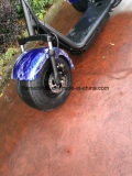 두 배 시트를 가진 1000W Citycoco Harley 스쿠터