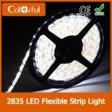 방수 고품질 SMD2835 DC12V LED 유연한 지구