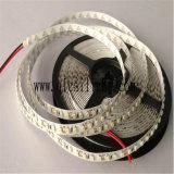 Tira impermeável 60LEDs/M do diodo emissor de luz de Flexibe 24V 3528 SMD