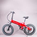 """Китай с переменной скоростью на заводе 26""""*4.0 Fat-Tire снег электрический велосипед"""