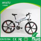 Bicicleta elétrica de montanha dobrável de 250 polegadas 250W 350W com roda de liga de magnésio