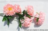 Kopf-künstlicher Pfingstrose-Blumen-Großverkauf des Fabrik-direkte Import-5