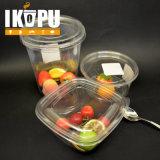 Gelato di plastica libero a gettare della ciotola di insalata della frutta