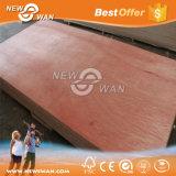 preço da madeira compensada de 18mm Bintangor, madeira compensada misturada do anúncio publicitário da folhosa