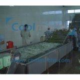 Burbuja de aire Máquina para lavar frutas y vegetales y la arandela de burbujas