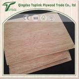 Toute épaisseur de faisceau normal de peuplier et d'eucalyptus de face de Bintangor de contre-plaqué
