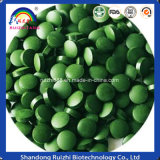 Hot-Saled Organic Spirulina Tablet Factory OEM