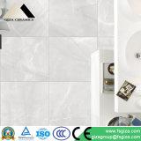 De grijze Tegels van de Vloer van het Porselein van de Kleur in 60*60cm (CK60910)