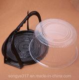 6 인치 브라운 밑바닥 휴대용 투명한 플라스틱 케이크 상자